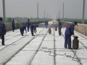 东莞APP防水卷材施工