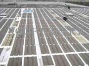 东莞钢结构铁皮屋面防水