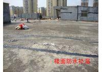 东莞莞城专业防水补漏施工队