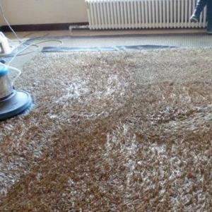 东莞地毯清洗公司