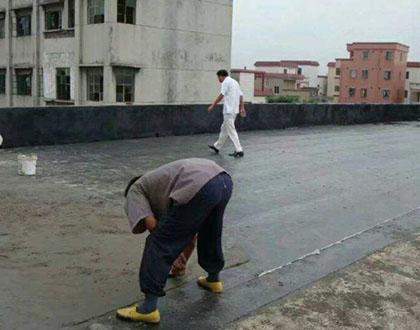 东莞聚氨酯屋面防水补漏